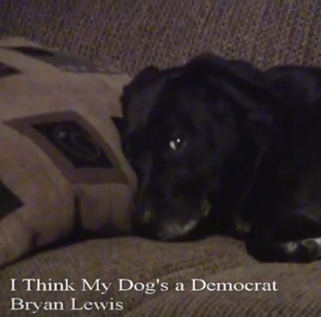 I Think My Dog S A Democrat Video