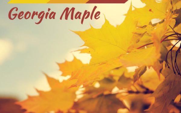 Georgia Maple - Edgar Loudermik - New Music Releases by Music Charts Magazine®